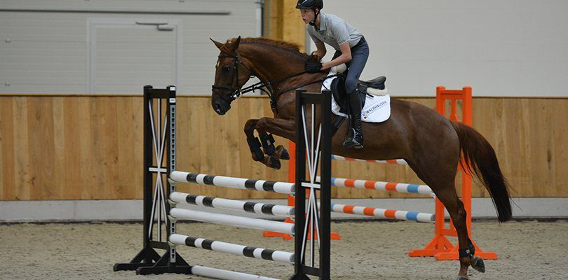 show-jumping-vertical