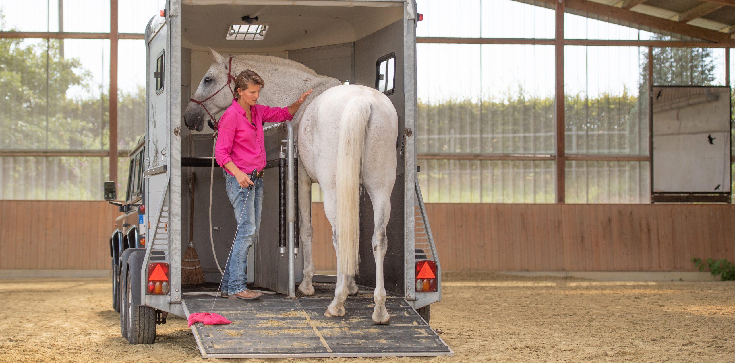 loading-horse-trailer