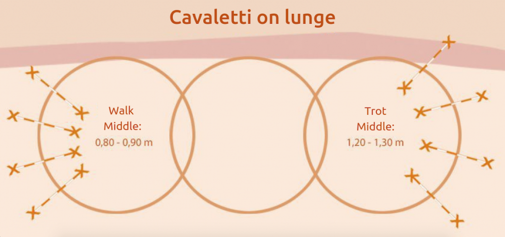 Cavaletti-training-lunge
