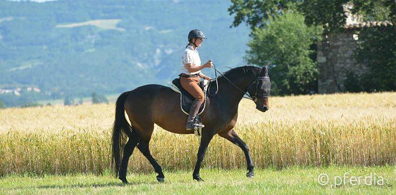 légèreté-riding-training