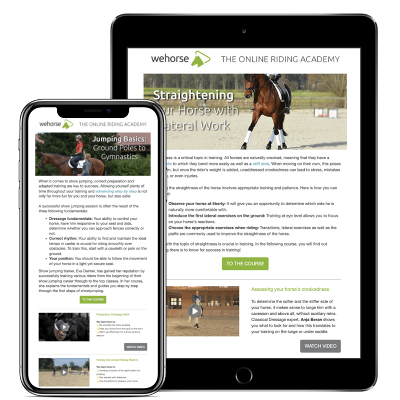 The weekly wehorse newsletter