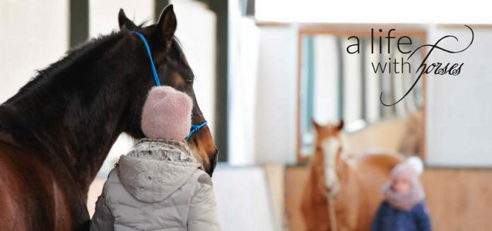 Pferde-verstehen-Menschen