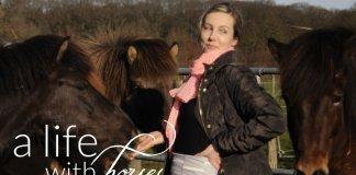 Fotos-mit-Pferden