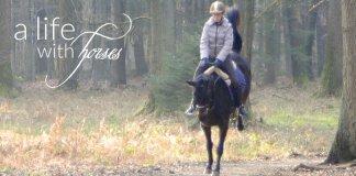 langeweile-beim-Pferd-vermeiden