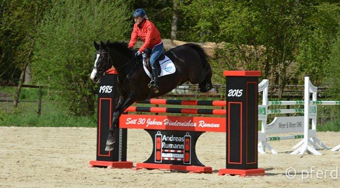 Springen-Ingrid-Klimke