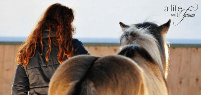 Pferd-Tod-was-sagen