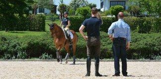 Pferdeausbildung-bei-den-Werndls