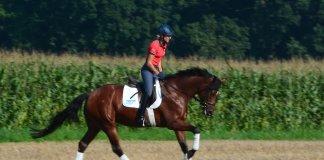 Ingrid-Klimke-reitet-auf-Stoppelfeld