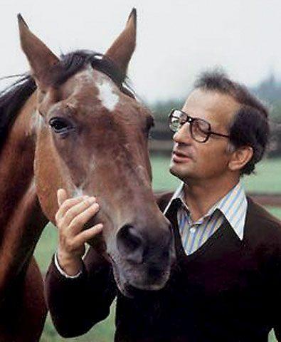 halla-meine-pferde-und-ich