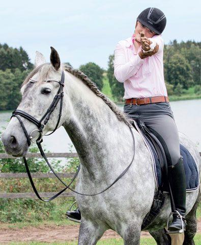 Wie bewegt sich der Reiter