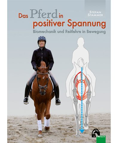 Stefan-Stammer-positive-Spannung-beim-Pferd