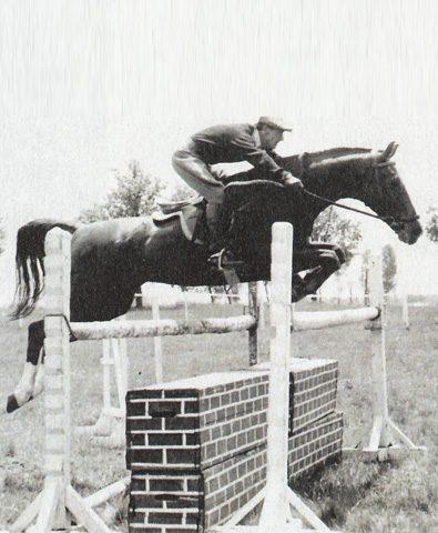 Pferd-Springreiten