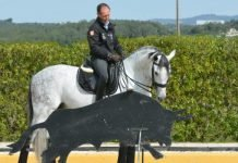 working-equitation-pedro-torres